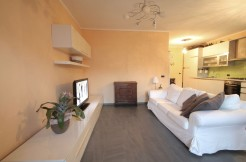 Lake Como Domaso Furnished Apartment with Lake View Terrace