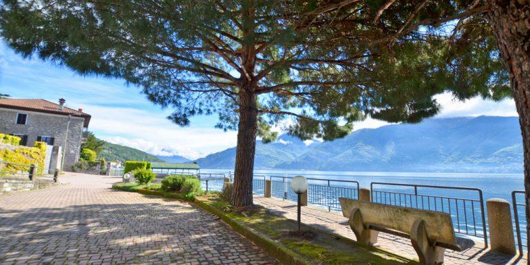 Cipresso 10 - lake Como