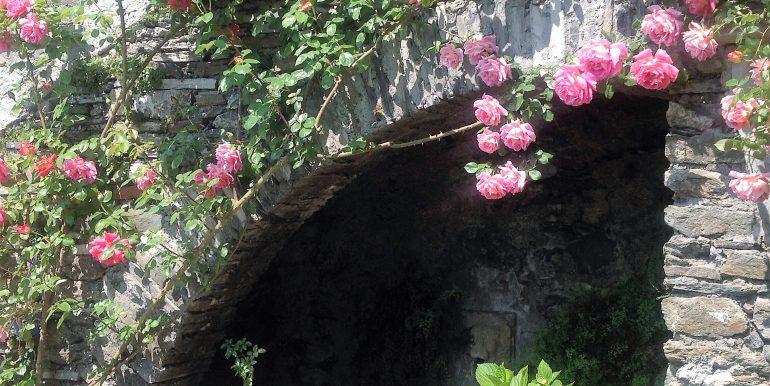 Garden in apartment Mastena