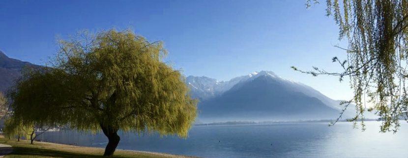 Camping Domaso front lake Como