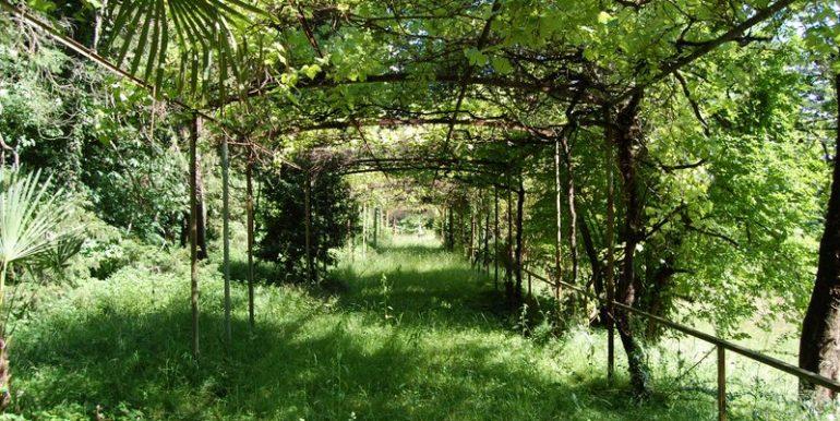 Garden in period villa Griante