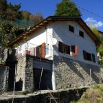 Laglio Detached House - garden and terrace