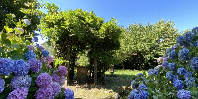 Rid. Lago Como Menaggio Villa con giardino (11)