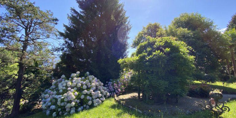 Rid. Lago Como Menaggio Villa con giardino (13)