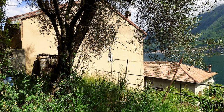 Garden Colonno's house